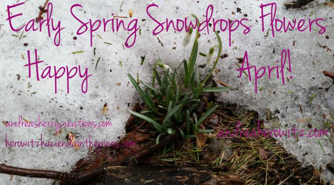April Snowdrops